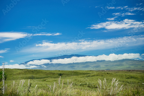 Foto op Plexiglas Centraal-Amerika Landen A view of Mauna Kea from Waimea on the Big Island of Hawaii. Green pasture land in the foreground. Blue sky and white clouds.
