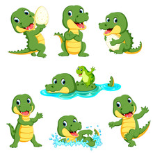 Collection Of Cute Alligator C...