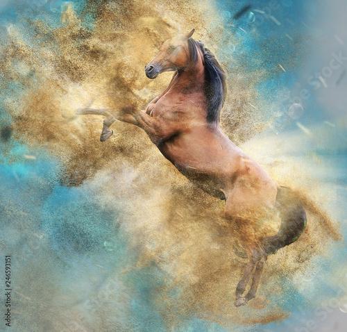 Fototapety, obrazy: Pferd im Sandsturm