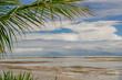Beaches of Brazil - Bitingui Beach, Japaratinga - Alagoas state