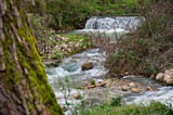 source of the river sele, caposele avellino.
