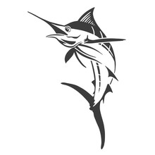 Hand Drawn Marlin Fish Jump. Design Elements For Logo, Label, Emblem, Sign, Brand Mark. Vector Illustration.