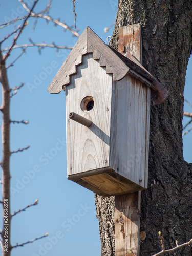 Fotografering Handmade birdhouse hanging on a tree in the orchard.