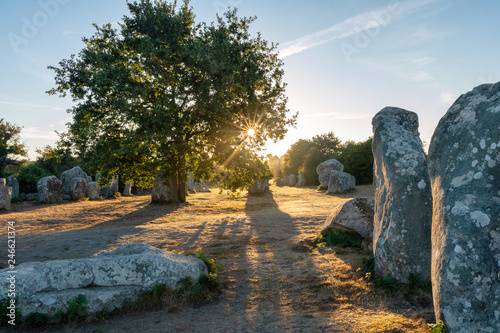 Foto op Plexiglas Historisch geb. French landscape - Bretagne. A field with several menhirs at sunrise.