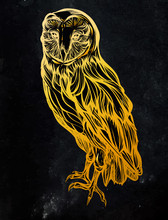 Barn Owl. Detailed Gold Drawing Of A Bird. Handmade.Vector Illustration Isolated On  Black Background