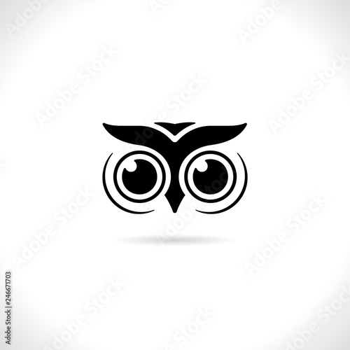 Fotografie, Tablou  Vector of an owl face design on white background. animal bird lo