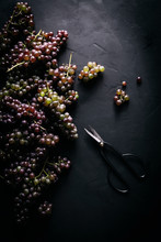 Clusters Of Grapes