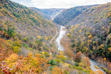 """Pine Creek Runs Through The Fall Colors Of The """"Grand Canyon"""" Of Pennsylvania At Leonard Harrison State Park"""