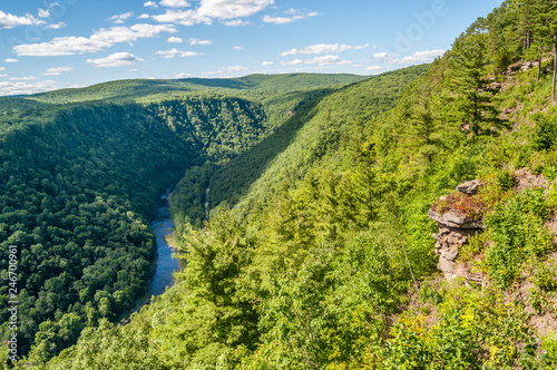 Leonard Harrison State Park is Home to the Grand Canyon of Pennsylvania Wallpaper Mural