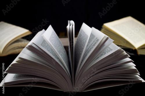 Fotografie, Obraz  libros y letras