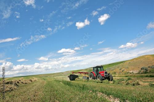 Photo Agriculture - Alfalfa