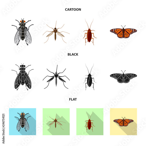 Photo sur Toile Papillons dans Grunge Vector illustration of insect and fly logo. Set of insect and element vector icon for stock.
