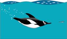 Penguin Swimming Vector Illust...