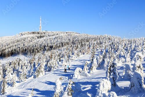Fototapeta Szczyrk, Polska. Winter at Skrzyczne peak obraz