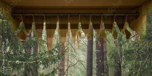 Fotografie, Obraz  Clothes hanger with dresses in the forest