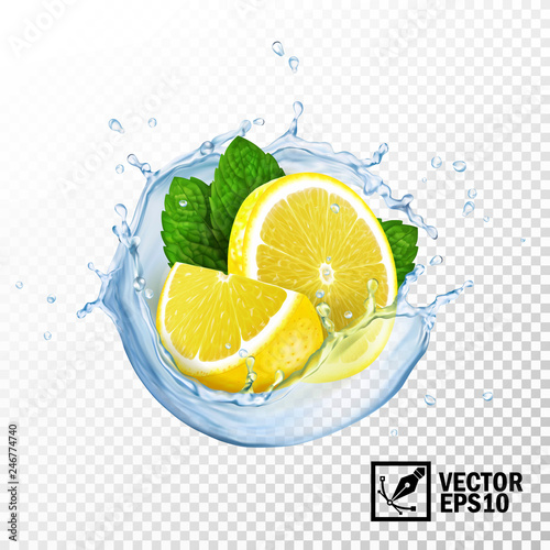 Fototapeta 3d realistic isolated vector slices lemon and fresh mint leaves in a splash of water or tea with drops obraz