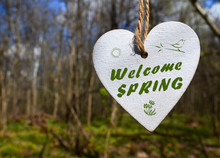 Welcome Spring Greeting Card W...