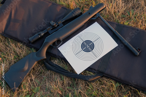 Pinturas sobre lienzo  airgun and target