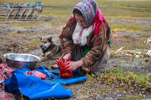 Photo The extreme north, Yamal, the past of the Nenets people, the womens cuts the mea