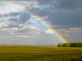 Fototapeta Tęcza - Rainbow over the autumn yellowed field