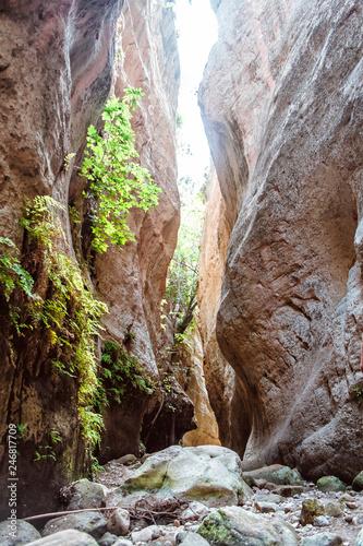 Fotografie, Obraz Stuck Hanging Stone in Avakas canyon
