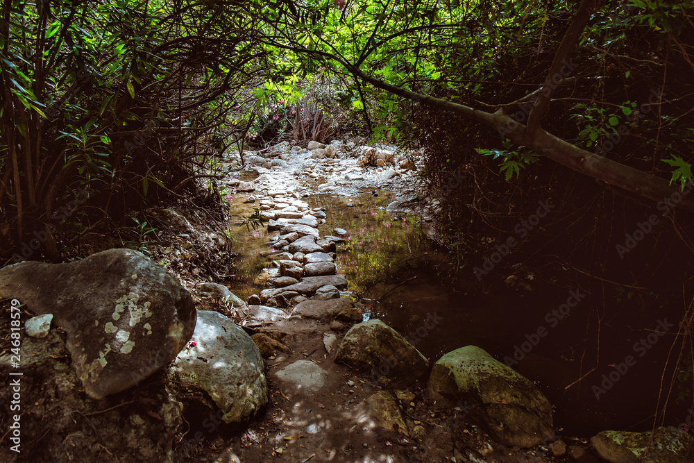 Fotografie, Obraz Amazing natural landscape in the Avakas canyon in Cyprus