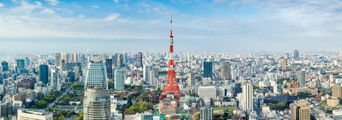 Tokyo Panorama mit Tokyo Tower, Japan
