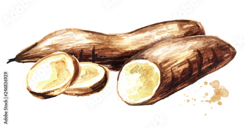 Photo Cassava root, tuber and slices
