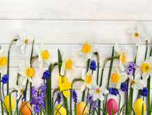 Easter Decoration. White And Yellow Narcissuses, Hyacinths, Flowers Muscari And Colored Easter Eggs On Background Of White Painted Wooden Planks With Space For Text. Top View, Flat Lay