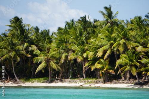 Fototapety, obrazy: Karibik
