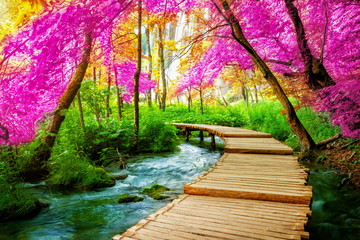 FototapetaBeautiful wooden path trail for nature trekking with lakes and waterfall landscape in Plitvice Lakes National Park, UNESCO natural world heritage and famous travel destination of Croatia.