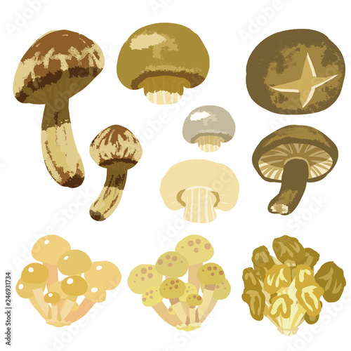 Photo 秋野菜(きのこ)イラストセット1  Autumn vegetables (mushroom)   illustration set