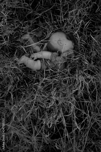 Fotografie, Tablou burned plastic doll in the woods