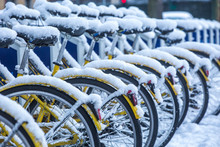Row Of Snow-covered Bicycles F...