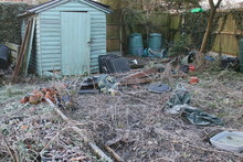 Winter Landscape Of Wooden Decaying Old Shed In Allotment Garden With Raised Beds, Wheelbarrow, Gravel Paths, Plants, Leaves, Tools, Compost Bins On Freezing Icy Day, White Frost Layer On Ground