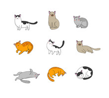 Cute Cartoon Cats Of Different...