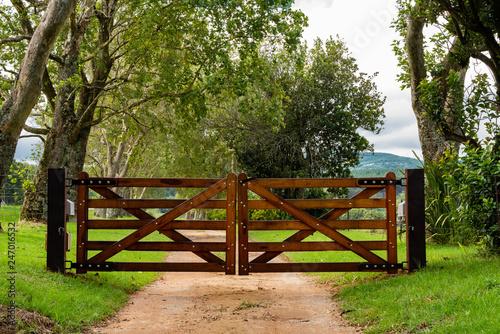 Cuadros en Lienzo Wooden gates to a tree lined avenue.