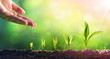 Leinwandbild Motiv Hand Watering Young Plants In Growing