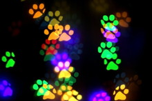 Colorful Bokeh In The Shape Of...