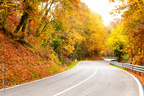 Autumn foliage in Chianti region, Tuscany, Italy.