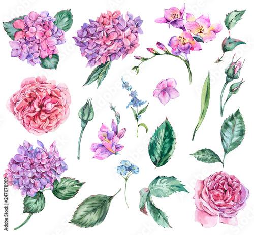 Leinwandbilder - Set of Summer Watercolor Flowers Hydrangea, Freesia, Roses, Garden Flowers,