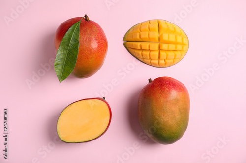 Flat lay composition with ripe mangoes on color background