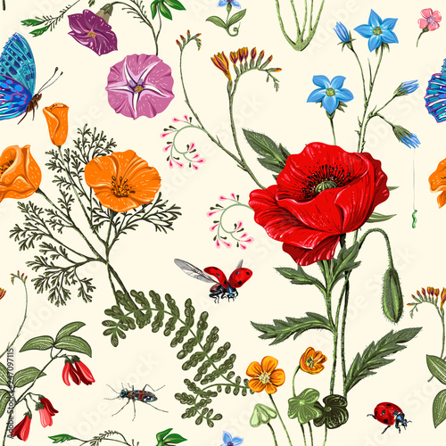 Obraz Summer vector seamless pattern. Botanical wallpaper. Plants, insects, flowers in vintage style. Butterflies, beetles and plants in the style of Provence. Drawn nature wallpaper. Summer background - fototapety do salonu