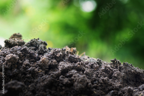 Fotografia, Obraz  Soil for planting enriched with essential minerals needed for plants white green bokeh background