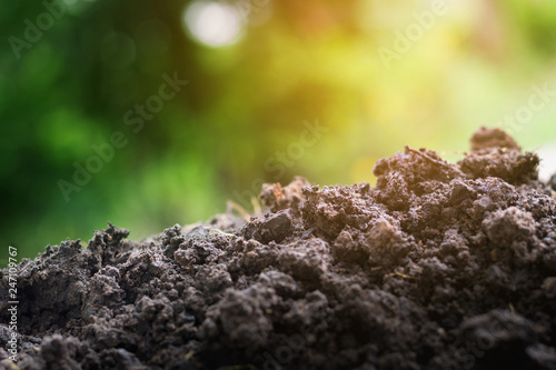 Valokuva  Soil for planting enriched with essential minerals needed for plants white green bokeh background