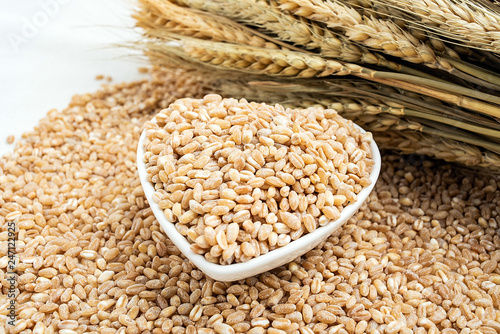 Wheat kernel and wheat ears - Buy this stock photo and