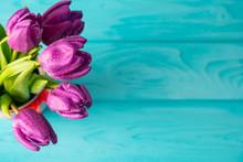 Beautiful Fresh Purple Tulips ...