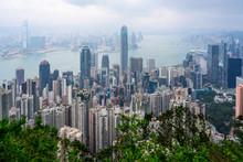 Hong Kong View From Victoria Peak
