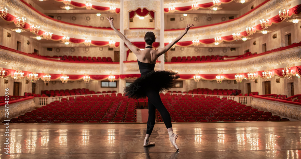 Fototapety, obrazy: Ballerina standing on stage of amazing theatre and lookng at the auditorioum