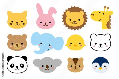 Fotografie, Obraz  幼稚園の組にありそうな動物達